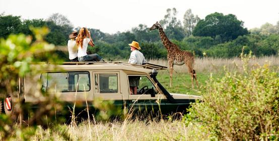 VISIT THE NAIROBI NATIONAL PARK, KENYA
