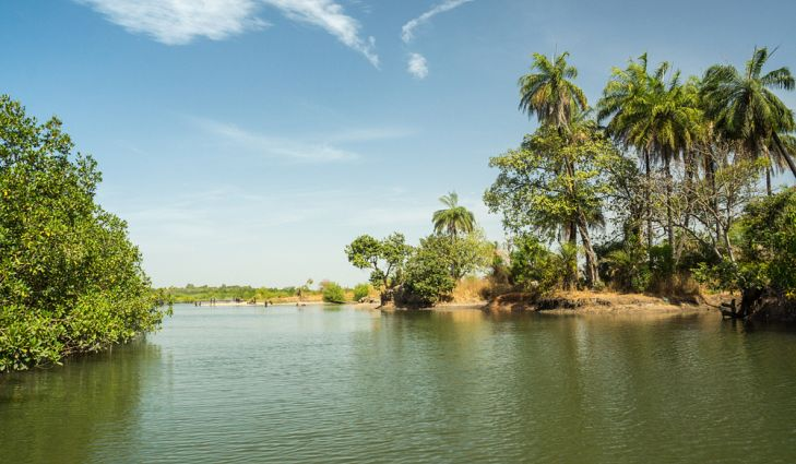 Want An Experience With Nature? Think 'The Gambia'