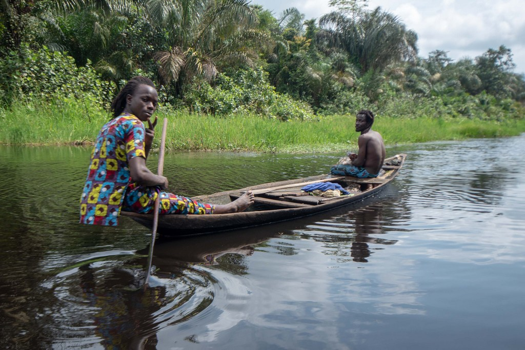 Mangrove Forest: Something Fishy In Epe